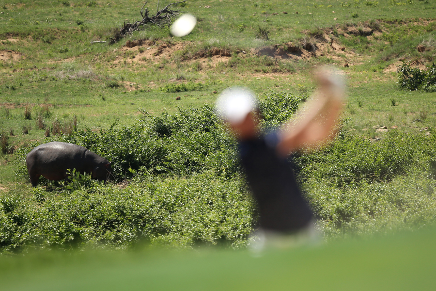 Leopard Creek brings with it a whole different kind of golf fan.