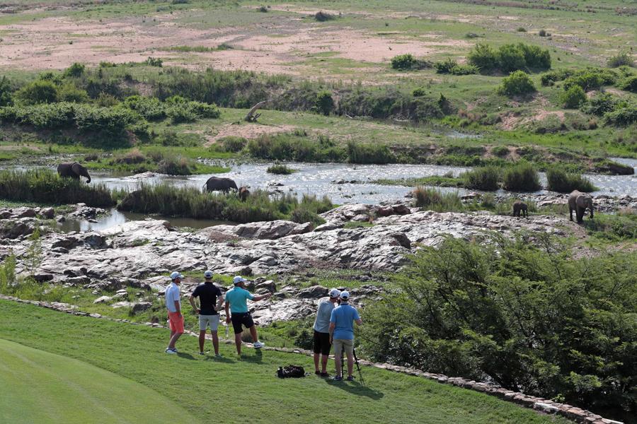 There's always time to appreciate the view of the Kruger National Park and its majestic animals from the iconic 13th green at Leopard Creek.